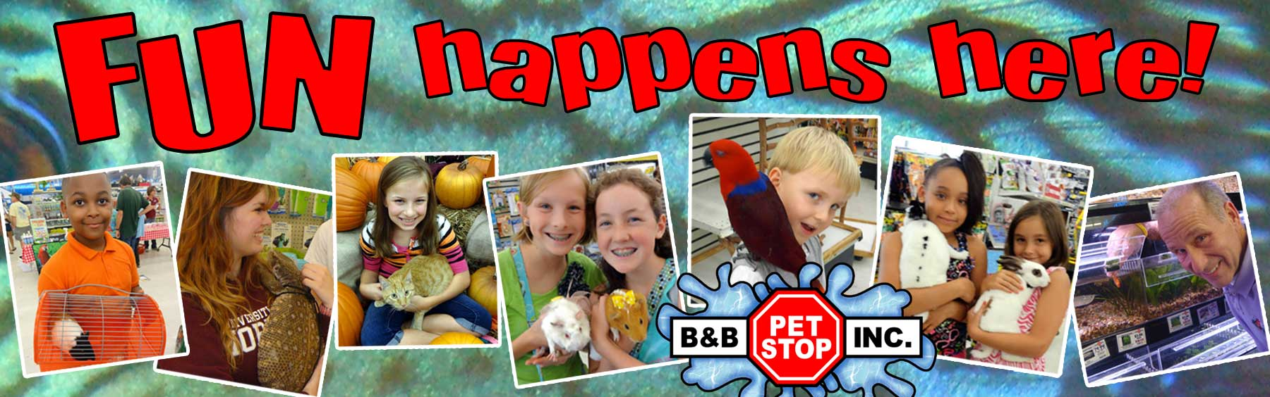 Fun happens at B&B Pet Stop