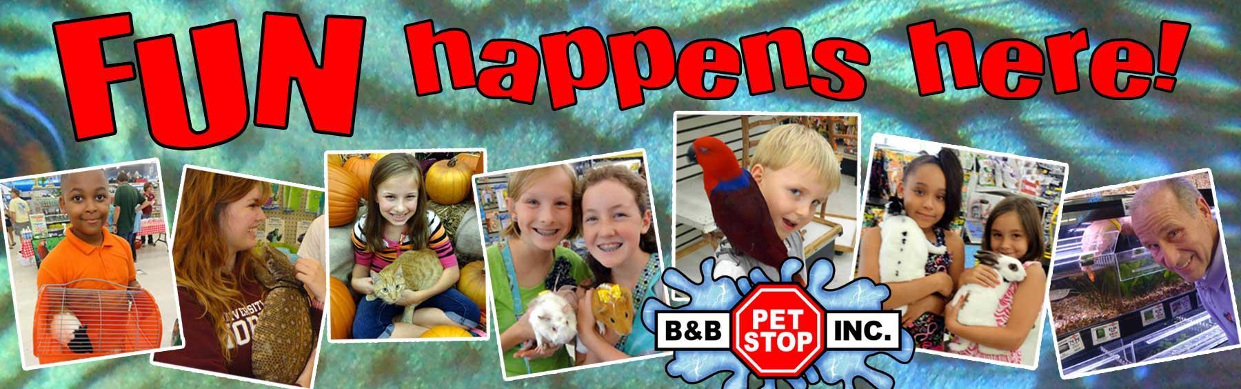 Fun happens at B&B Pet Stop