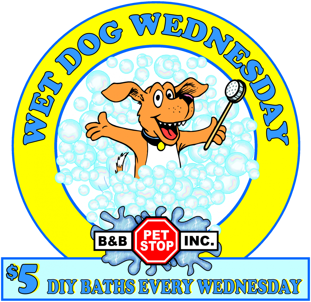 Dogs cats bb pet stop wet dog wednesday every wednesday bathe your dogs cats for 500 each do it yourself pet wash tubs solutioingenieria Image collections