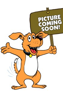ARCHIE-PICTURE-COMING-SOON